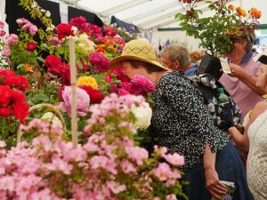 Blenheim-Palace-Flower-Show-1-300x225 Blenheim Flower Show