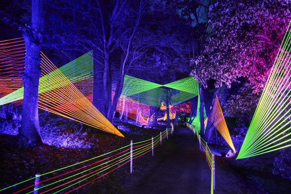 Laser Garden at Blenheim Palace