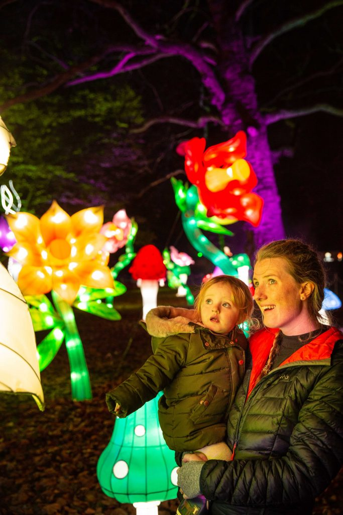 Family-algow-in-garden-of-flowers-at-Alice-in-Winterland-1-683x1024 More Dates Added For Lightwater Valley's Family Christmas Event